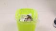 废弃旧电池别当垃圾, 装在垃圾桶上,很好用!