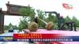 泰兴宣堡镇:打造更具生态涵养银杏养生特色风情小镇VA0