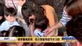 迎端午:缝香囊编蛋网  幼儿体验传统节日习俗
