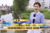《深化全国文明城市创建曝光台》之七:河道水体污染  居民备受影响