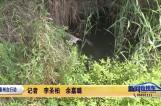 """""""263""""泰州在行动 海陵苏陈镇:河道污染严重 养殖场成罪魁祸首"""