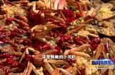寻味蟹都 兴化蟹美食大比拼