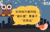 """科画丨生物钟代谢风险:""""猫头鹰""""要高于""""百灵鸟"""""""