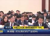 全国人大代表史立军在江苏代表团全体会议上发言VA0