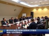 泰州市代表团分组审议省政府工作报告  审查计划和预算报告