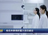 杨岳来泰调研重大项目建设