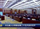 市五届人大常委会第二十五次会议召开
