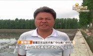 姜堰区各镇水稻机插秧掀起高潮