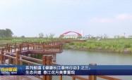 系列报道《健康长江泰州行动》之三:生态共建 春江花月美景重现
