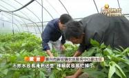 梅雨季節 當心農田內澇