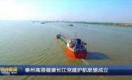 泰州高港健康长江党建护航联盟成立