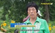 高港新闻2019-08-18HD