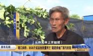 靖江斜桥:3500斤成品鱼批量死亡 疑是养殖厂排污所致