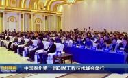 中国泰州第一届BIM工程技术峰会举行
