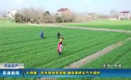 高港新聞2020-03-04HD