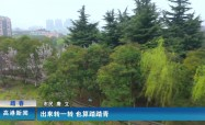 高港新闻2020-03-22HD