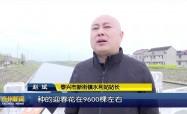 """古馬干河:加快河道整治 推動""""河常治"""""""