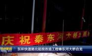 东环快速路北延段改造工程泰东河大桥合龙