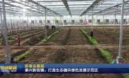 新春走基层  泰兴新街镇:打造生态循环绿色发展示范区
