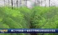 靖江今年新建4个省级农作物病虫绿色防控示范区