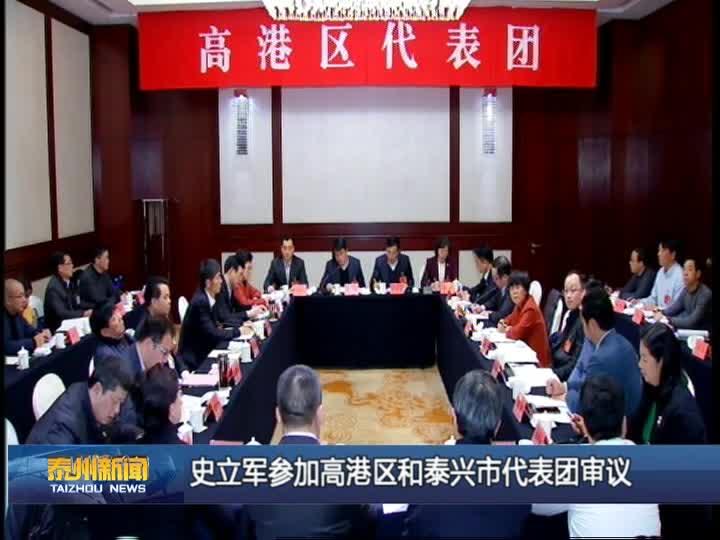 史立军参加高港区和泰兴市代表团审议