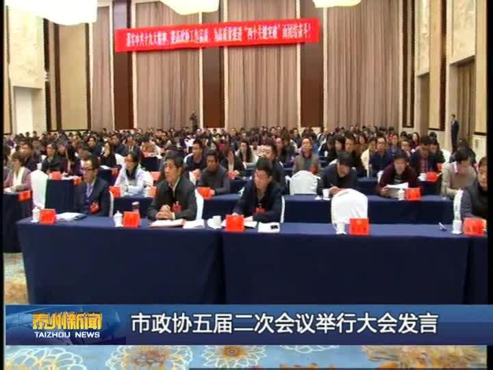 市政协五届二次会议举行大会发言