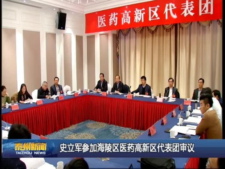 史立军参加海陵区医药高新区代表团审议