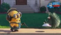 一部小黄人的动画短片《宠物》,啊啊啊萌出血