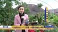 《创业英雄会》(47)刘英姿:小盆景成就创业大风景