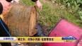 263泰州在行动:靖江市:对待小污染 也要零容忍VA0