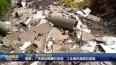 """""""263""""泰州在行动  高港:广告牌后隐藏垃圾堆  工业废料混进垃圾箱VA0"""