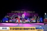 第十届中国泰州水城水乡国际旅游节今晚开幕VA0