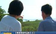 """《青春高港再远航》之三 长江""""黄金岸线""""也是""""风景线"""""""