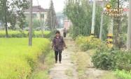 土路数十年未修 村民出行难
