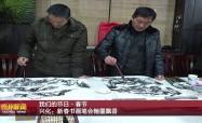兴化:新春书画笔会翰墨飘香VA0