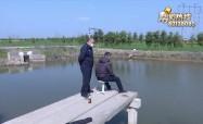 高壓線下 請勿釣魚放風箏