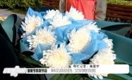 清明节特别节目:鲜花换纸钱 文明寄哀思