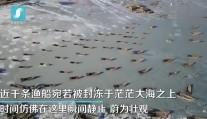 """时间静止!千条渔船被海冰包围 宛若被""""冰封""""茫茫海上"""