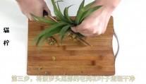 菠萝身上扔掉的它, 没想到又能种出一个菠萝来, 又大又甜快试试