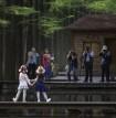 【休闲】5.19 水上森林邀您免费游园!