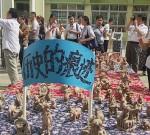 """""""在玩中学,在做中学""""---全国600多位教师相聚姜堰,探索""""新教育实验"""""""