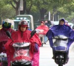 阳光,周四见!今天泰州继续阴雨,天气湿冷……