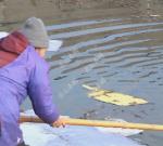 大冷天,靖江78岁老汉骑车下坡时突然冲入河里,67岁的她看到后……