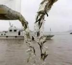 都去哪儿了?长江靖江段刀鱼开捕首日,5条渔船全部跑空……