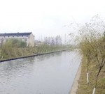 森林进城、绿意满城、花开全城……泰兴绿是这样的!