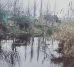 姜堰98岁老人骑三轮跌入河中,危急时刻,他纵身跳进河里...
