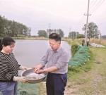 """泰兴""""环保鱼"""" 被纳入国家增殖放流名录  每年为长江、湖泊提供放流种苗300多万尾"""