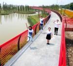 靖江市新桥镇新合村:全心打造美丽、安全、温馨的幸福乡村