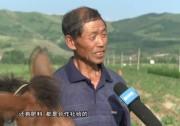 【视听】山西岚县:小土豆让老百姓脱贫致富