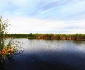 百集微视频《发现泰州之美》第七集:秋雪湖